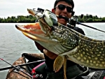 S.baby_bass.130_big_pike_fish_and_love_02