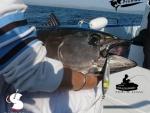 fishandlove_slures_thon_02