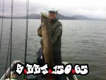 pike_120cm_slures_handmade_lure_s-bbj-150_03