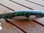 S.Sardignole.120_green_mackerel_01