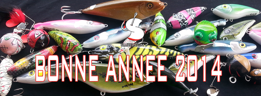 bonne_annee_2014