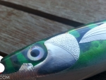 S.Sardignole.120_green_mackerel_03